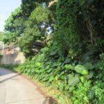 【売土地】名護市名護183.31坪/角地、静かな環境♪ 画像1