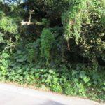 【売土地】名護市名護183.31坪/角地、静かな環境♪ 画像3
